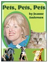 Pets Pets Pets Babylon Beacon